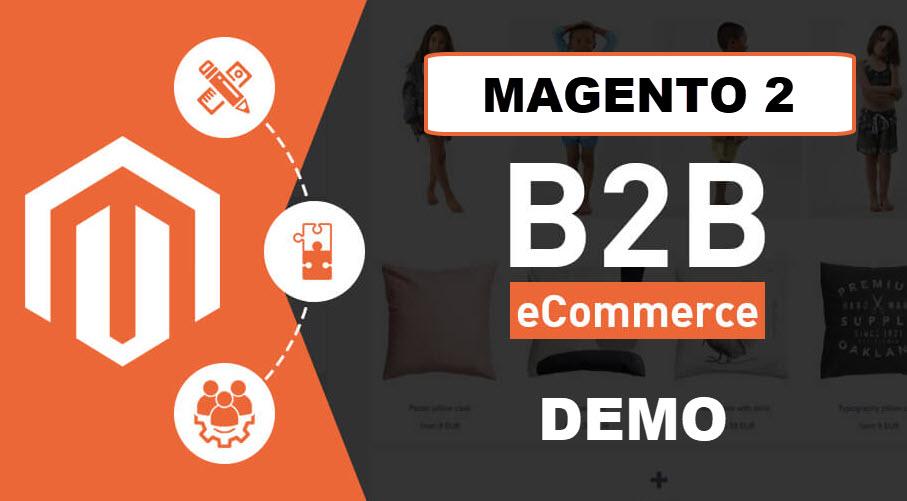 magento 2 b2b demo